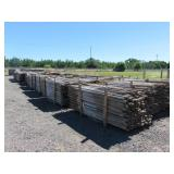 Large Lot of Tree Stakes
