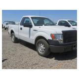 2010 Ford Pickup