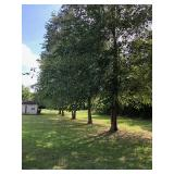 9.70 Acres And Home In 1 Tract