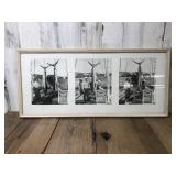 Framed and Matted Fishing Photos