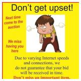 Internet bidding is not perfect