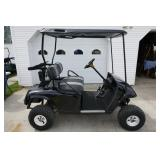 EX-GO TXP ELECTRIC GOLF CART-NEW BATTERIES