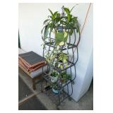ROD IRON PLANT STAND WITH PLANTS