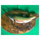 Brook Trout Mounted on Wood Plaque
