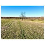 Absolute Auction  Premier Development or Agricultural Land