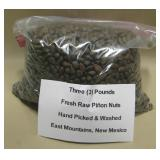 3 LB Handpicked/Cleaned Raw Natural Pinon Nuts