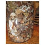 About 2lbs Of Rough Mexican FIre Agate Quart Jar 2