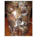 About 2lbs Of Rough Mexican FIre Agate Quart Jar 8