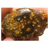 48.8Cts Partially Worked Fire Agate Specimen