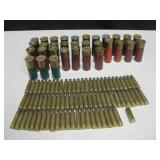 Spent 223 Brass & 12 Gauge Shells
