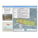 119-070-06 * Cooper Landing * 1.7 +/- Acres