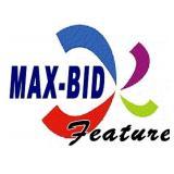 What Is Max Bid?