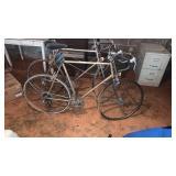 Vintage Fuji Bike