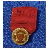 Gold Excellence Pin