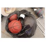 Bag of Assorted Sports Balls