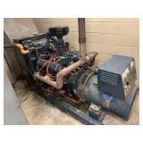 Kohler electric plant natural gas generator