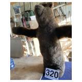 "Bear Adjustable positions H-42"""