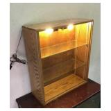 Light-Up Bookcase