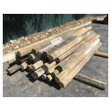 Approximately 38 Treated Fence Posts