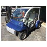 Ford Think Electric Cart (No Batteries)