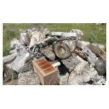 Chopped Tree Trunk Firewood Bundle