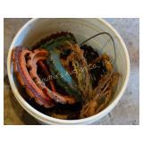 20+ Corn planter rings - bucket lot