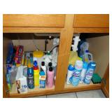 Contents under kitchen sink, cleaners, press n