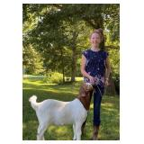 Alyssa Rehkemper Goat Project