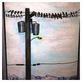 Birds on a Power Line