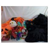 Halloween Decor and Costumes