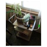 Cart with Contents, Plant and More