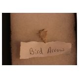 Small bird Arrowhead
