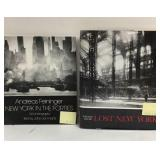 New York in the Forties and Lost New York books