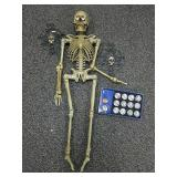 Halloween skeleton and other items