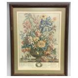 Framed botanical engraving 12 Months of Flowers