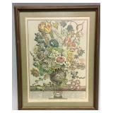 Framed botanical engraving 12 Months of Flower