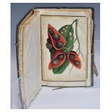 Chinese Botanical Book