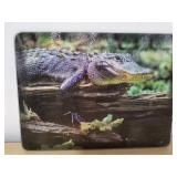 Tempered glass cutting board 12 x 16