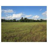 13-1/2 Acres In 1 Tract