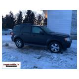 2009 Ford Escape Limited, hail damage, sterring w