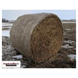 (10) Piper Sudan Grass Bales, Netwrapped, put up .