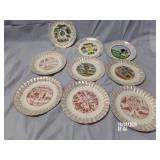 Lot of  9 Decorator State Plates