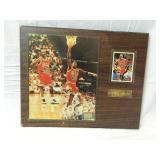 15x12 Michael Jordan Wood Plaque