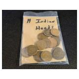 Lot of 14 Indian Cents