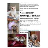 $25 Donation to HSBC