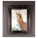 Pronghorn buck painting