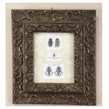 Insect Engraving Mounted in an Antique Frame