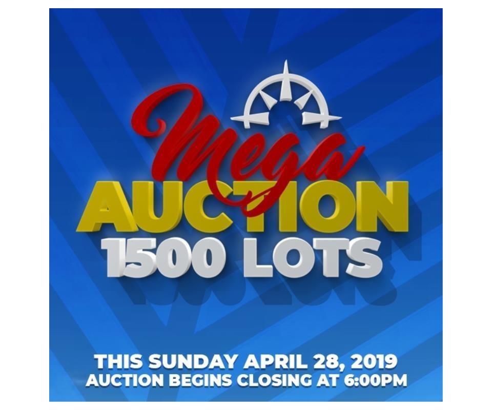 11957f18c62451 MEGA Auction Sunday ~1500 Lots -April 28, 2019