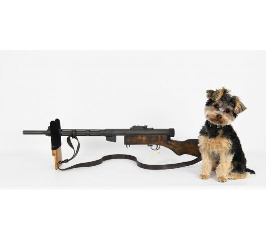 Gun Collectors Dream Auction #22