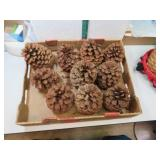 "Flat of 10 Very Large Pine Cones 6"" x 5"""